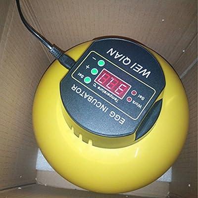 Mini Automatic Incubator 8 eggs Duck Goose Bird Incubator Family hatch tool 110V