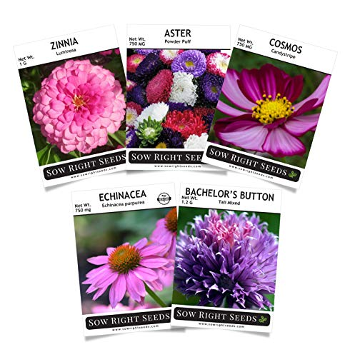 Sow Right Seeds - Mostly Pink Flower Seed Garden Collection - Zinnia, Cosmos, Coneflower, Bachelor Button, and Aster Flowers; Full Instructions for Planting, Gardening Gift