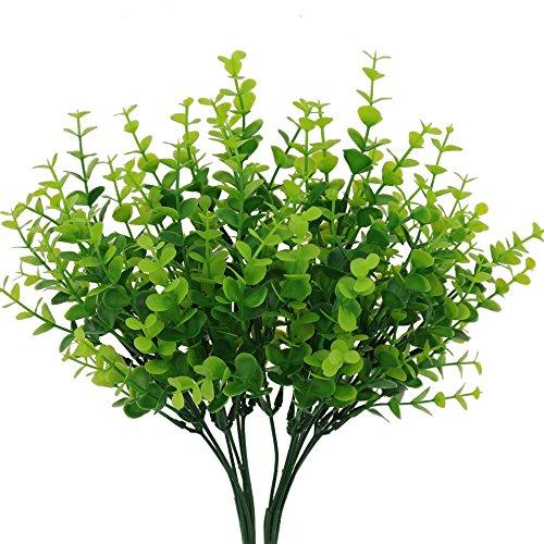 Asparagus Vase - 6