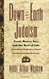 Down-to-Earth Judaism, Arthur I. Waskow, 0688151272