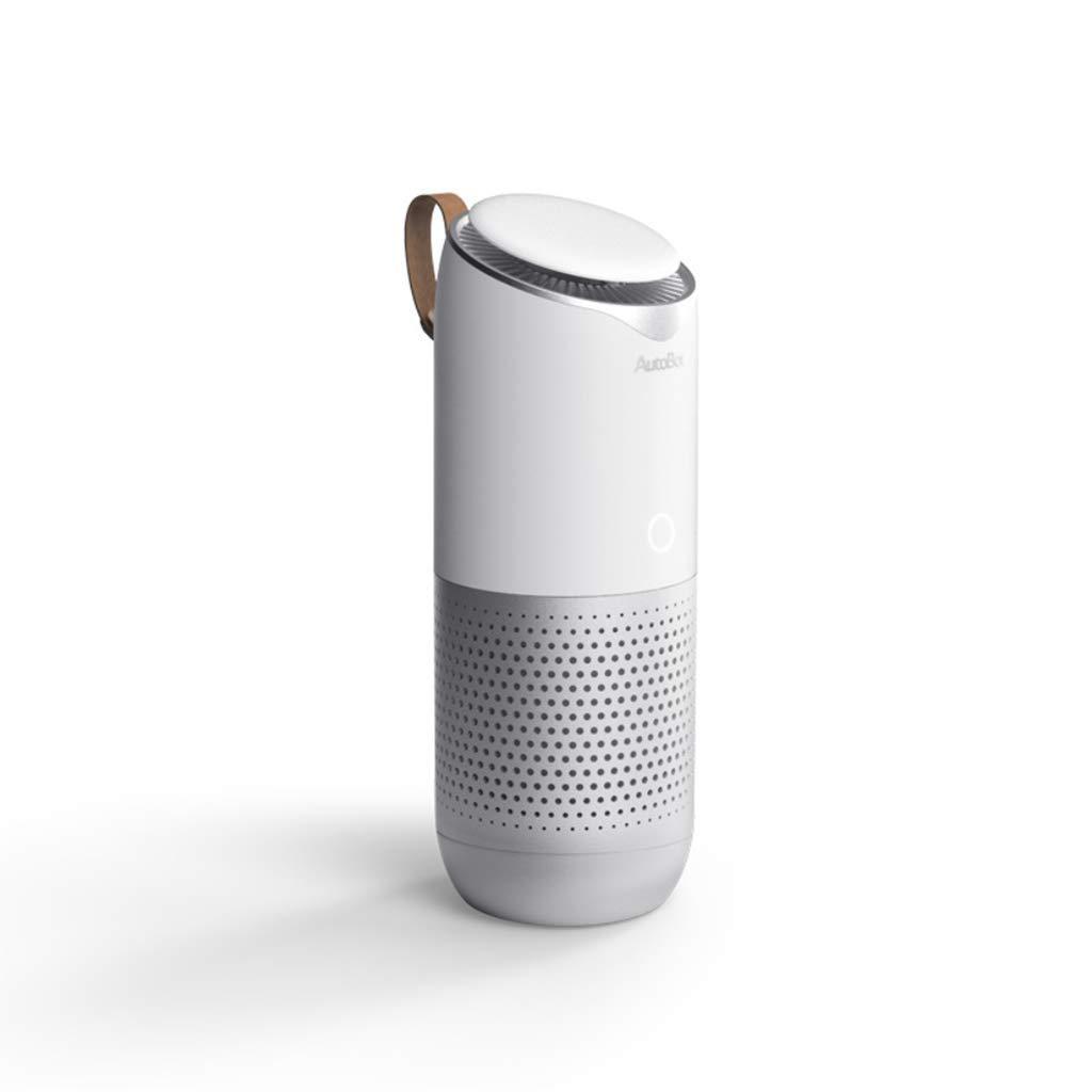欲しいの 車の空気清浄機、オフィスデスクトップ家庭用空気清浄機 Host+1、デュアルユース車の空気清浄機、曇り除去Pm 2.5臭い煙USB清浄機 (色 : Host+1 filter) : filter) Host+1 filter B07M71NZGS, 祝開店!大放出セール開催中:23107bdd --- yelica.com