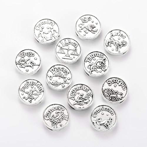 NACOLA 12 Constellation Flat Round Beads for Jewelry Making;12pcs/Set Zodiac Sign Tibetan Style Alloy Slide Charms