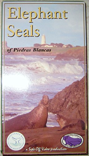 Elephant Seals of Piedras Blancas [VHS]