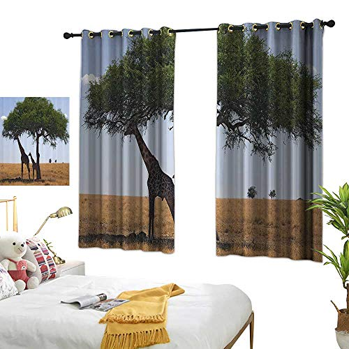 Thermal Insulated Drapes for Kitchen/Bedroom Safari Decor Collection Baby and Mom Giraffe under the Tree the Tallest Animal Mammal in Savannahs Nature Art Photo Darkening and Thermal Insulating 72