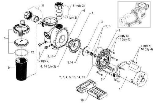 Amazon Com Tork Jandy Flo Pro Pool Pump Lid Oring R0480200 Models