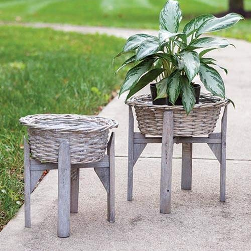 Willow Plant Stand - 10