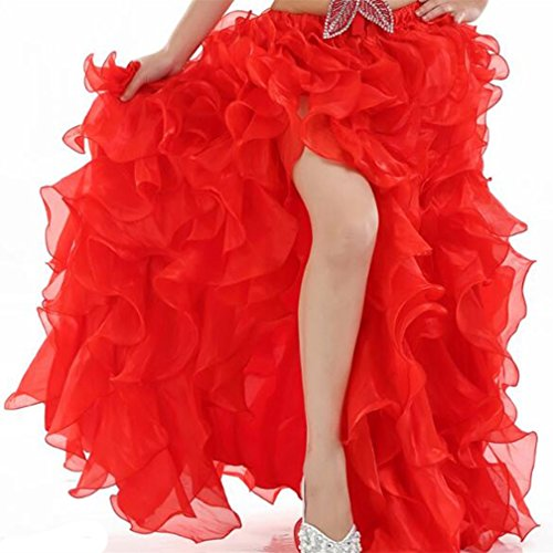 [2017 Women's High-end Belly Dance Bubble Skirt Flare Skirt Princess Split Skirt With Flower] (Dance Team Costumes Competition)