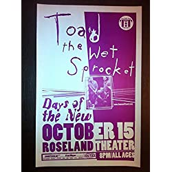 Toad The Wet Sprocket Glen Phillips Rare Original Portland Concert Tour Poster