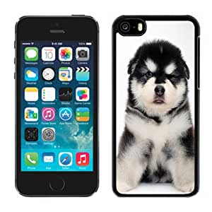 Fashionable Custom Designed Cover Case For iPhone 5C With Baby Alaskan Malamute Phone Case Cover