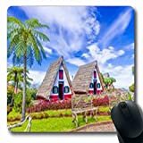 Pandarllin Mousepads Funchal House Madeira Island Portugal Holidays Historic Oblong Shape 7.9 x 9.5 Inches Oblong Gaming Mouse Pad Non-Slip Rubber Mat