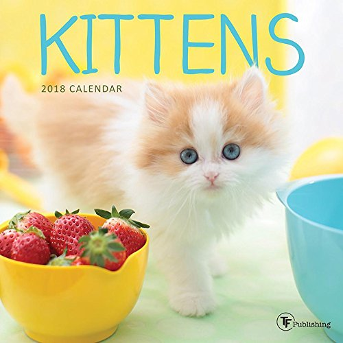 2018 Kittens Mini Wall Calendar