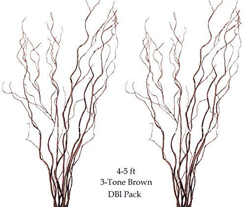 Green Floral Crafts 700-CW3BR4860-DBL Curly Willow with Extra Large Bunch of 16-18 (Floral Willow)