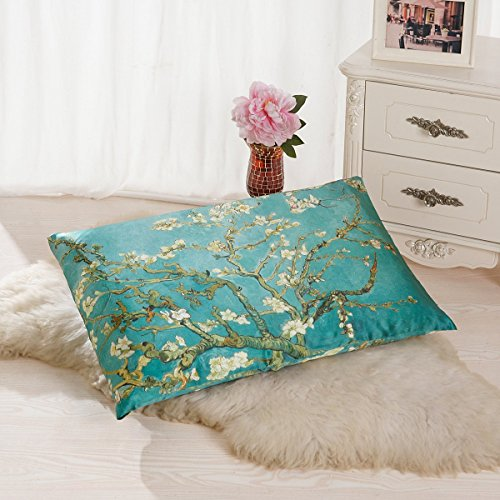 ALASKA BEAR - Natural Silk Pillowcase, Hypoallergenic, 19 momme, 600 thread count 100% Mulberry Silk, Queen Size with hidden zipper, Custom Painting Pillow Case for Room Décor(1, Almond (Wash Silk Fabric)