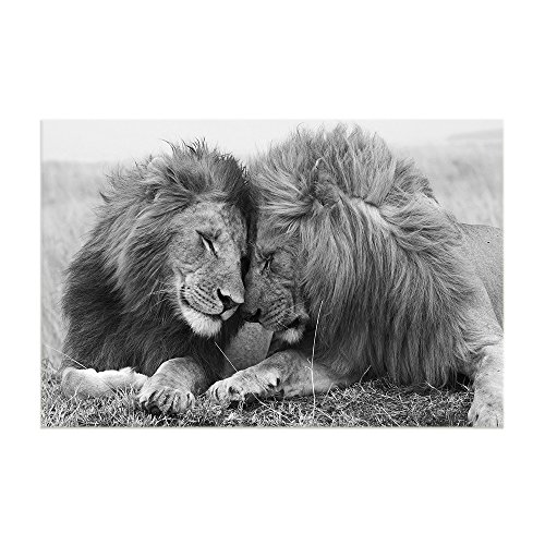 Lion Head Pictures - KALAWA Large Home Decor Lion Couple Wall Pictures Prints On Canvas Black White Lion Head Portrait Wall Art Painting Pictures Modern Decoration Print for Room Ready to Hang (16''W x 24''H)