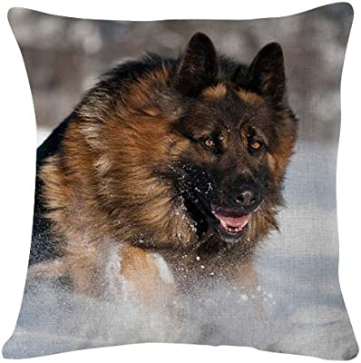 Magnificent Amazon Com German Shepherd Running In Snow Dog Animal Cjindustries Chair Design For Home Cjindustriesco