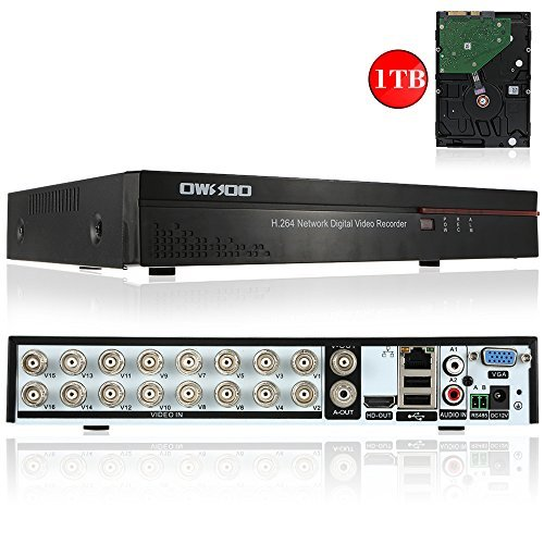 16 ch dvr with cameras - 3