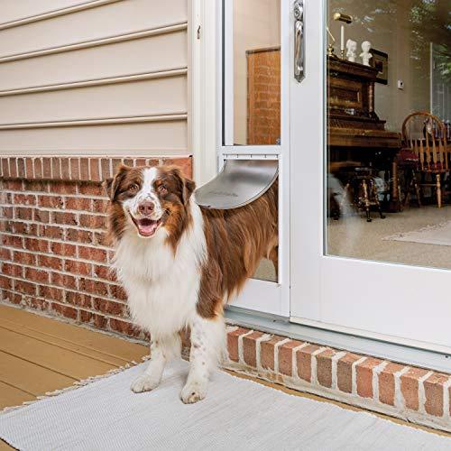 PetSafe Puerta corredera de Cristal para Mascotas, Grande