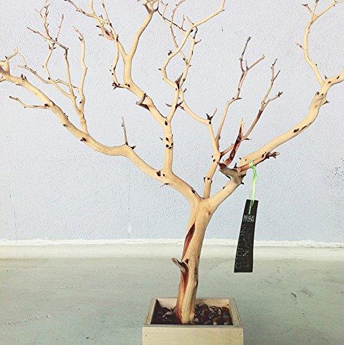 Amazon Com 30 Natural Natural Tree Jewelry Holder Jewelry Organizer Handmade