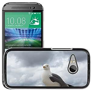 Print Motif Coque de protection Case Cover // M00125296 Gaviota Pájaro Bill Primavera Cerrar // HTC One Mini 2 / M8 MINI / (Not Fits M8)