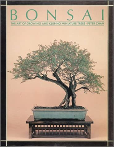 Book Bonsai: The Art of Growing and Keeping Miniature Trees