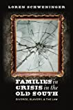 Families in Crisis in the Old South, Loren Schweninger, 1469619113