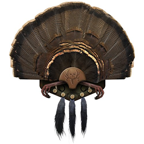 Mountain Mike's Reproductions Beard Collector Turkey Mounting Kit (Optional Fan Kit)