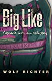 BIG LIKE: CASCADE INTO AN ODYSSEY
