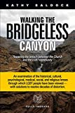 img - for Walking the Bridgeless Canyon: Repairing the Breach Between the Church and the LGBT Community book / textbook / text book