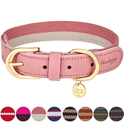 "Blueberry Pet 8 Colors Polyester Fabric and Soft Genuine Leather Webbing Dog Collar in Pink and Grey, Medium, Neck 15""-18"", Adjustable Collars for Dogs"