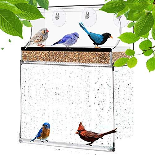 Molliy Window Bird Feeder with Bottom Swing Strong Suction Cups & Seed Tray, Bird Swing Outdoor Birdfeeders for Wild Birds, Finch, Cardinal, Bluebird, Large Outside Hanging Birdhouse Kits, Drain HOL (Best Bird Seed For Bluebirds)
