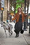 "Mendota Pet Dog Slip Lead, 3/8"" x 4', Black"