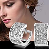 Fashion Lady Womens Crystal 925 Sterling Silver Ear Stud Hoop Earrings Jewelry