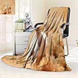 vanfan Heavy Blanket Winter Collection Arabian Horse Breed Running Out The Desert Storm Sand High Tail,Silky Soft,Anti-Static,2 Ply Thick Blanket. (60''x36'')