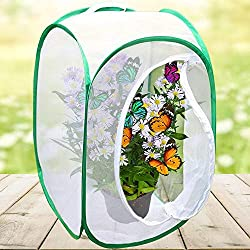 Gotian Portable Foldable Insect and Butterfly Habitat Cage Housing Enclosure (B)