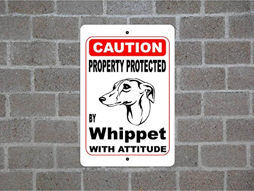 Teisyouhu Metal Street Sign Property Protected By Whippet Guard Dog Warning Breed Pet Sign for Yard Garage Driveway House Fence 8 x 12 -