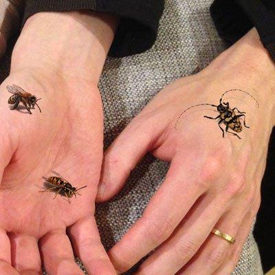 Generic carcasa alternativa pequeños insectos, abejas, avispas ...