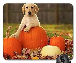 autumn pup Cute Cool Decorative Design Animal Dog Mousepad