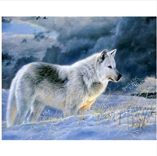 CZYYOU DIY Digital Malen Nach Zahlen Der Der Der Schnee Wolf Ölgemälde Wandbild Kits Färbung Wandkunst Bild Geschenk - Ohne Rahmen - 40x50cm B07PMQRJF1   Wunderbar  fba0cb