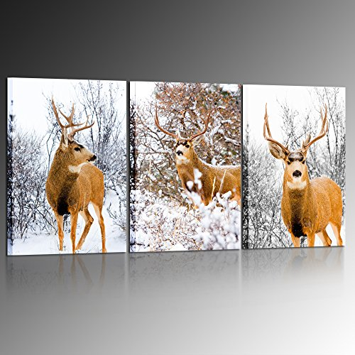 (Kreative Arts - 3 Piece Canvas Prints Wall Art Portrait of a Colorado Mule Deer in Winter Snow Pictures Paintings for Living Room Bedroom Kitchen Home Decorations 16x24inchx3pcs)