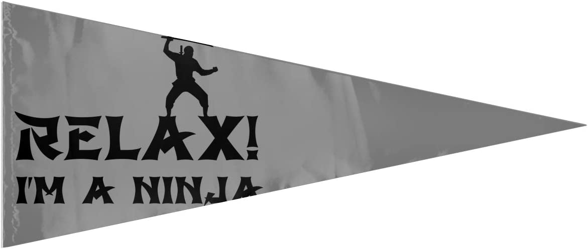 ZZATAA Relax I'm A Ninja Triangle Flag House Garden Flag 12x30 Inches Banner Flags