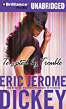 Tempted by Trouble: A Novel