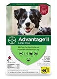 Bayer Advantage II Flea and Lice Treatment for Large Dogs, 21-55 lb, 6 doses