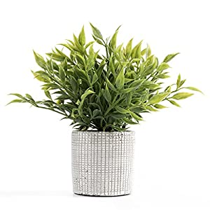 Cyrra 8 Inch high Bathroom Vanity Decor Ideas Indoor Artificial Grass Plants for Shelf Nandina 5