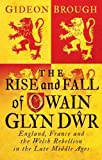 img - for The Rise and Fall of Owain Glyn D r: England, France and the Welsh Rebellion in the Late Middle Ages book / textbook / text book