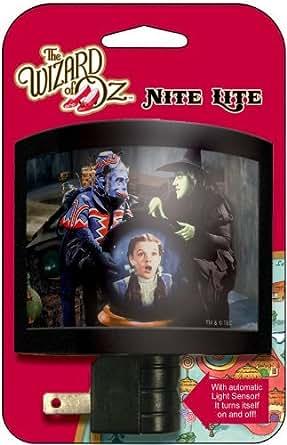 Wizard Of Oz Wicked Witch Flying Monkey Dorothy Night