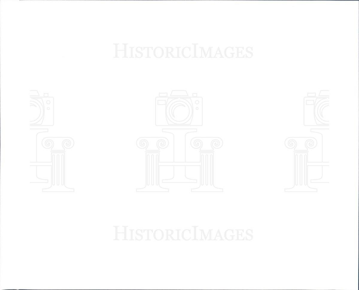 Grey DeLisle,Erika Toda Porn pics & movies Jill Wisoff,Claudia Pandolfi