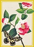 Winterthur Butterflies Everyday Embellished Notecards, , 0735338655
