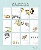 2018 Animal Calendar