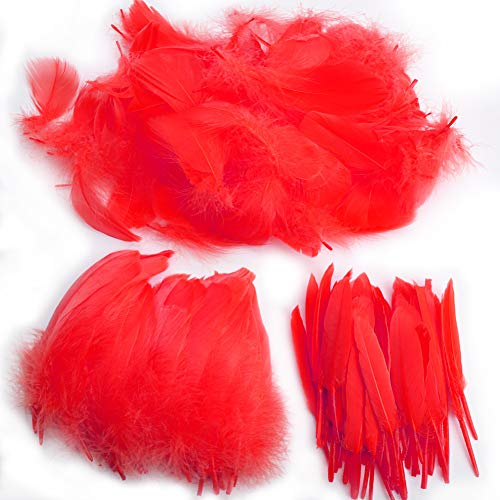 Feather for Crafts,250 Pcs Coloured Feather Striking Feathers for DIY Dream Catchers Natural Crafts Feathers for Wedding/Party/Decorations(3 Sizes) (Red)