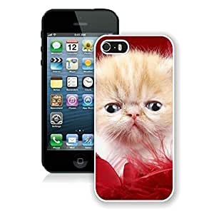 Personalization Iphone 5S Protective Cover Case Christmas Cat iPhone 5 5S TPU Case 33 White